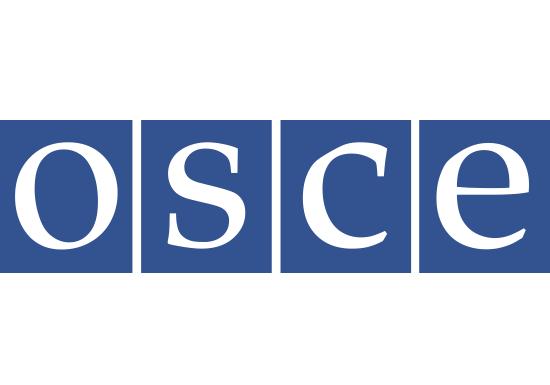 Image result for osce flag